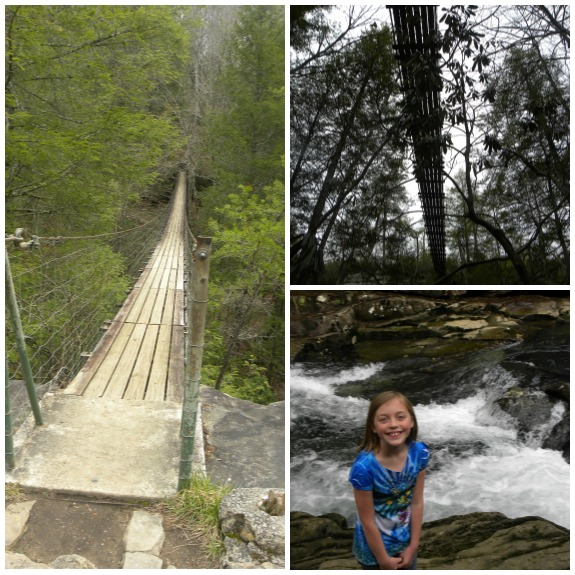 fall creek falls suspension bridge