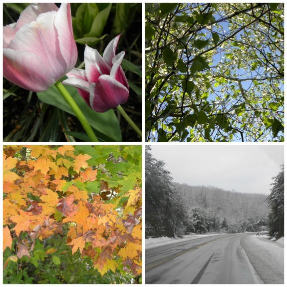 seasons in kentucky