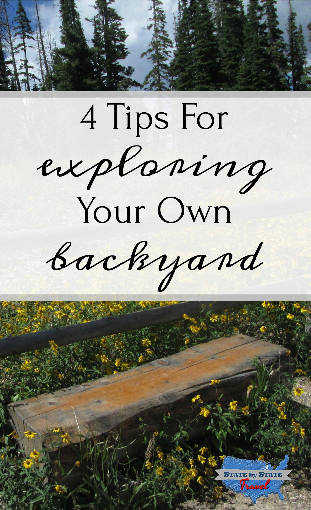 4 tips for exploring your own background