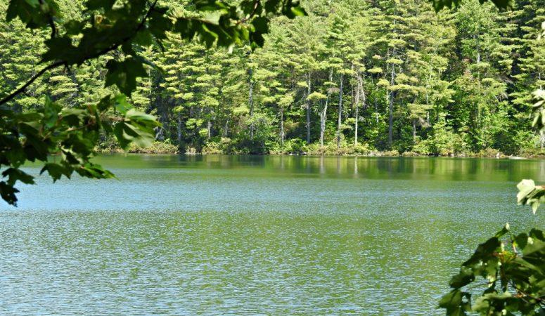 New Hampshire Hiking Destinations