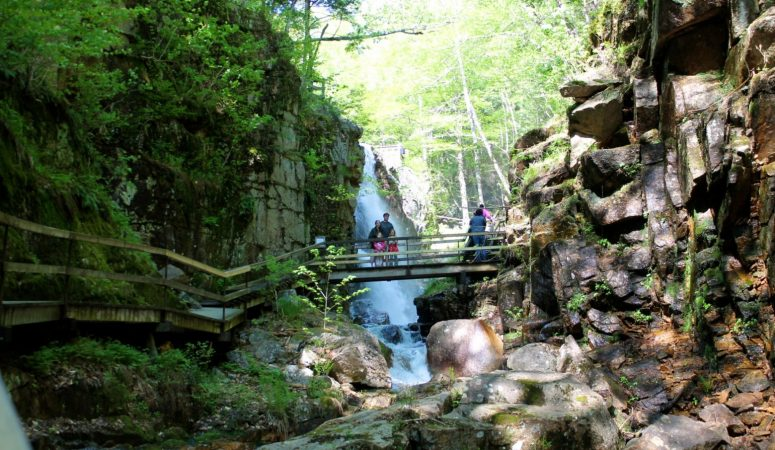 Flume Gorge In Franconia Notch State Park