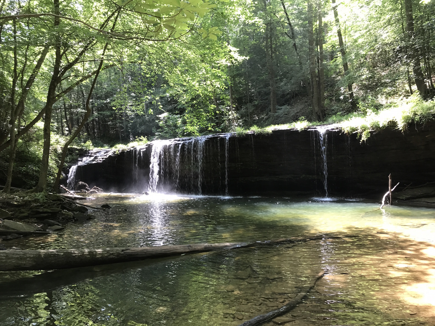 Best Central Kentucky Waterfall Hikes