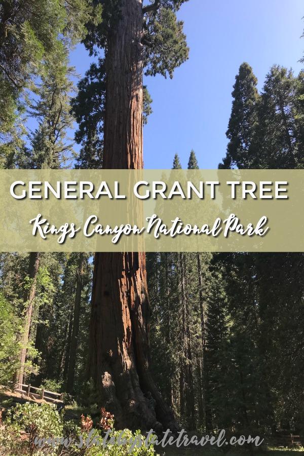General Grant Tree Kings Canyon National Park